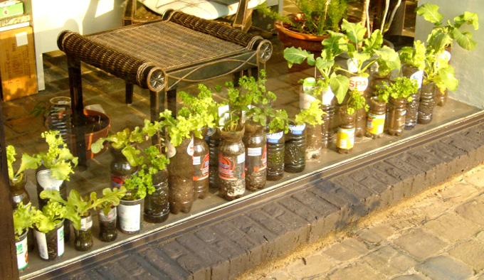 Container Vegetable Garden Ideas container garden 2007 03 Bottle Collection