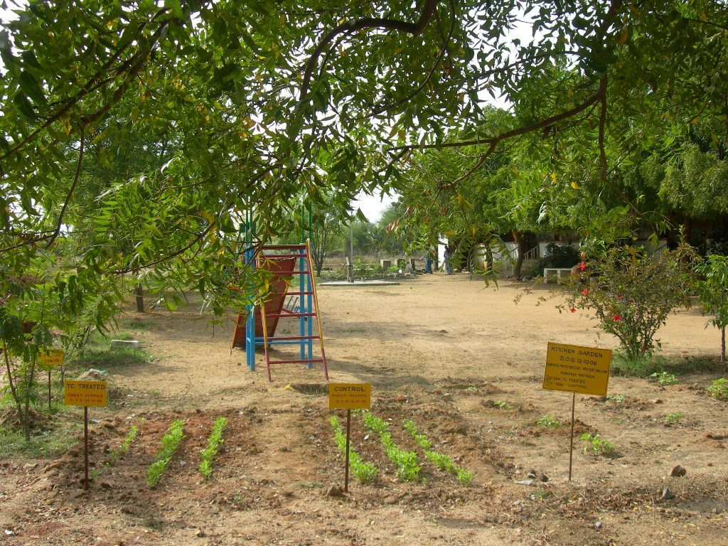 Kitchen Gardens In India India Kitchen Gardens And Fruit Tree Afforestation To Combat