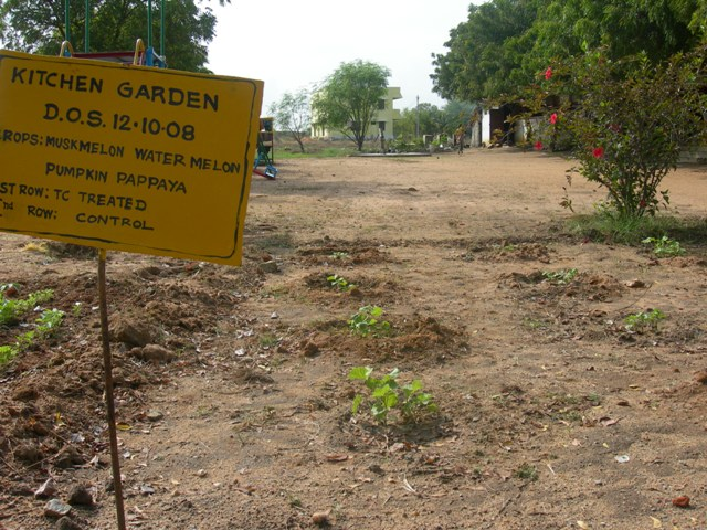India : Kitchen gardens and fruit tree afforestation to