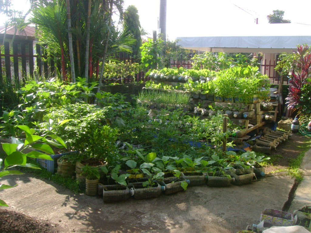 Combating hunger and malnutrition with bottles and pots for Garden design ideas in philippines
