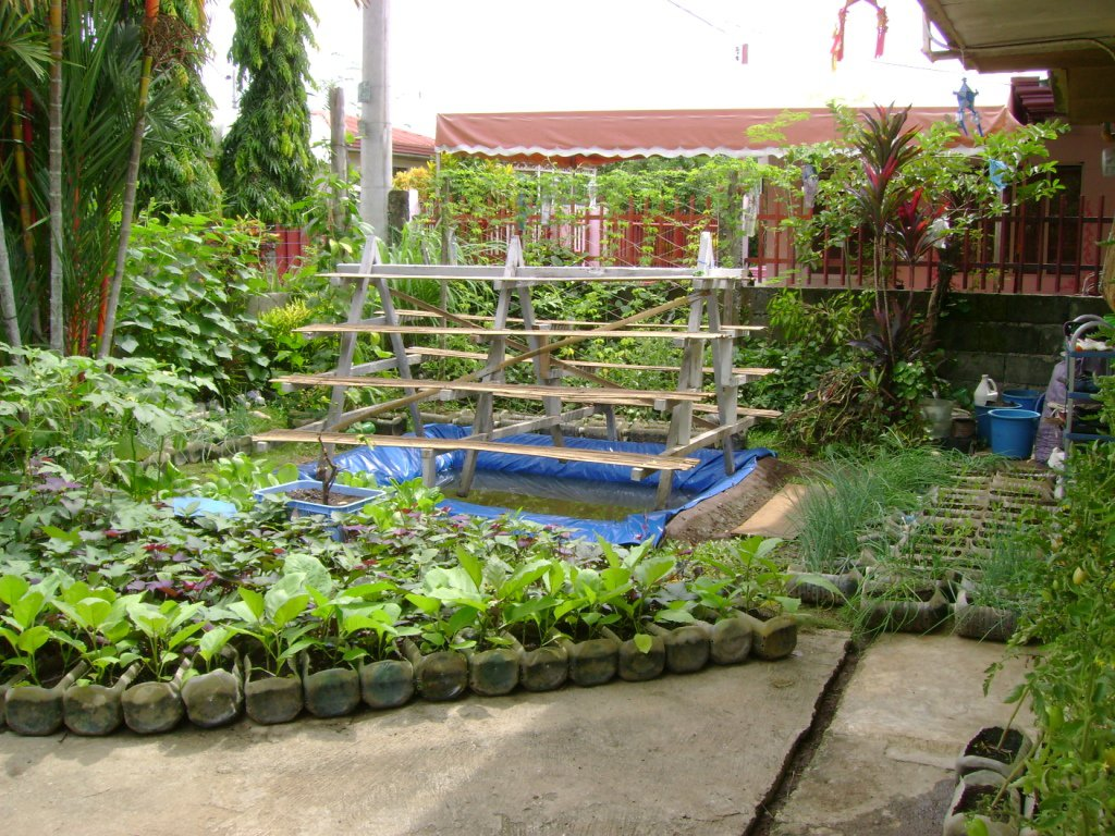 Small yard container gardening to be multiplied for all for Pocket garden designs philippines