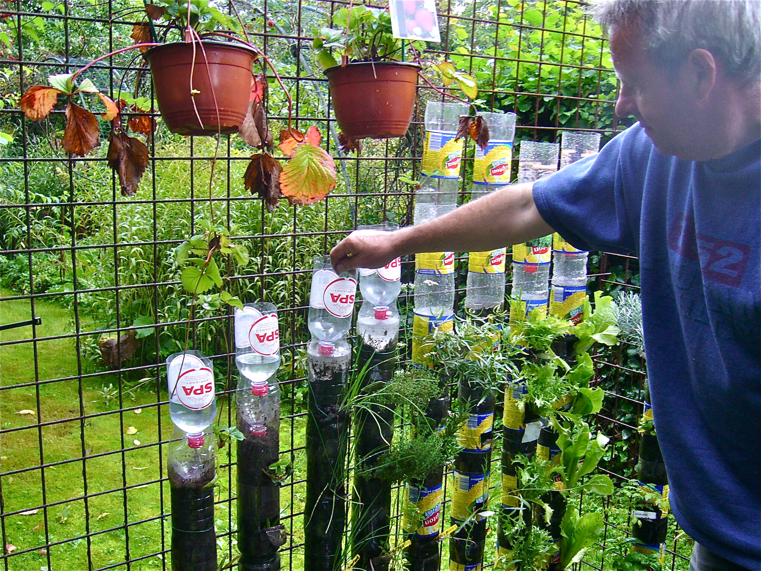 In the drylands how to build a bottle tower for container gardening