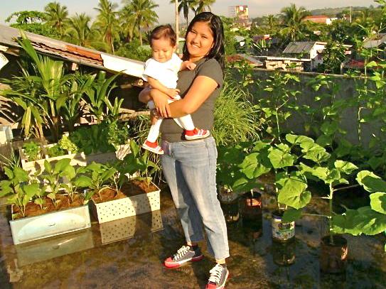 Rooftop Gardening Different Vegetables