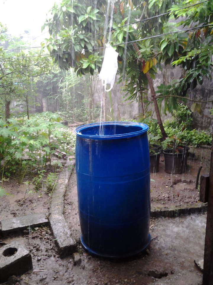 giant blue barrels drums for rain water harvesting