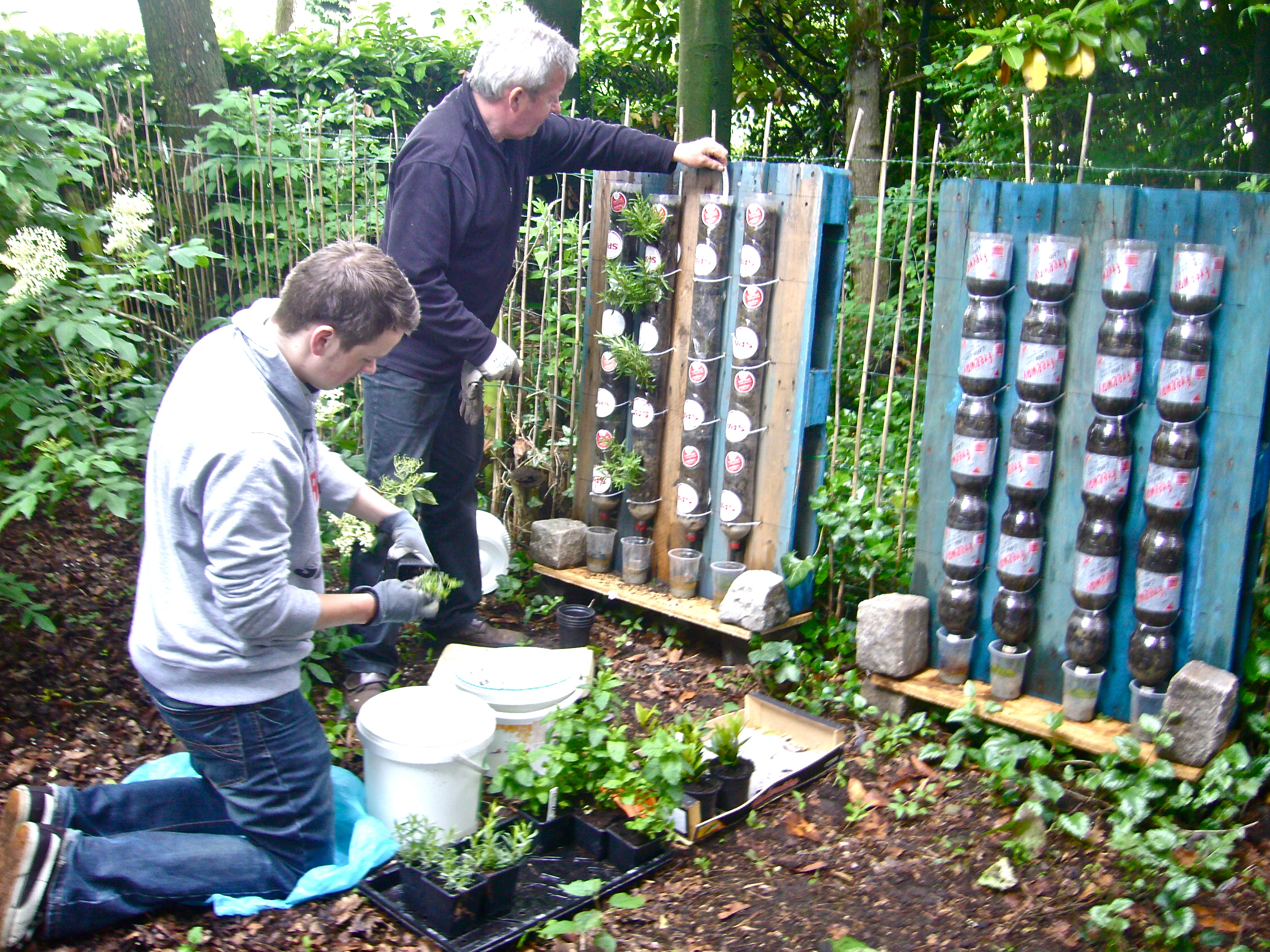 Gardening In Bottle : ... (Zaffelare, Belgium) setting up bottle towers on pallets (Photo WVC