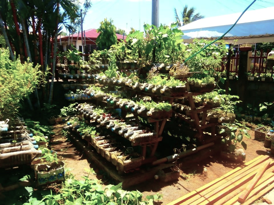 Alleviation of malnutrition and hunger by small scale for Home garden design in the philippines