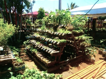 ALLEVIATION OF MALNUTRITION AND HUNGER BY SMALL SCALE CONTAINER GARDENING Jojo ROM Willem