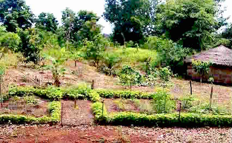 Soil restorations: mulching, composting, erosion checks,biochar