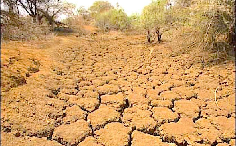 desertification - photo #6