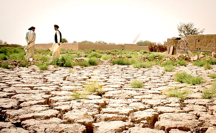 effects of desertification What causes desertification -overgrazing overgrazing was not as large of a  problem long ago because animals would move in response to rainfall people.