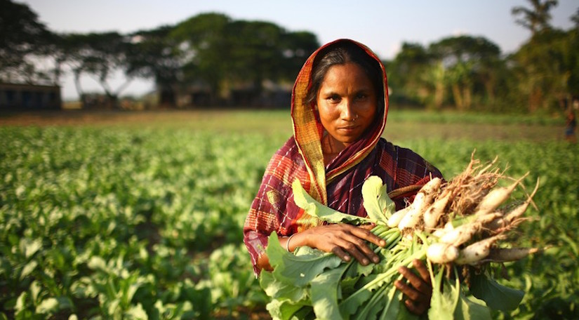 empowering rural women in the agricultural Women's role and leadership in agriculture and producers organisation is governed by various women constitute 1/3 of the agricultural labour force and 48 per cent of self employed farmer (ilo fpos provide opportunities for the rural women to participate in the decision making process of the.