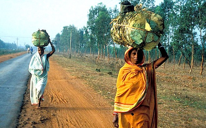 In India, women carry food. Photo: World Bank/Curt Carnemark - http://static.un.org/News/dh/photos/large/2015/March/03-05-2015Women_Bank.jpg