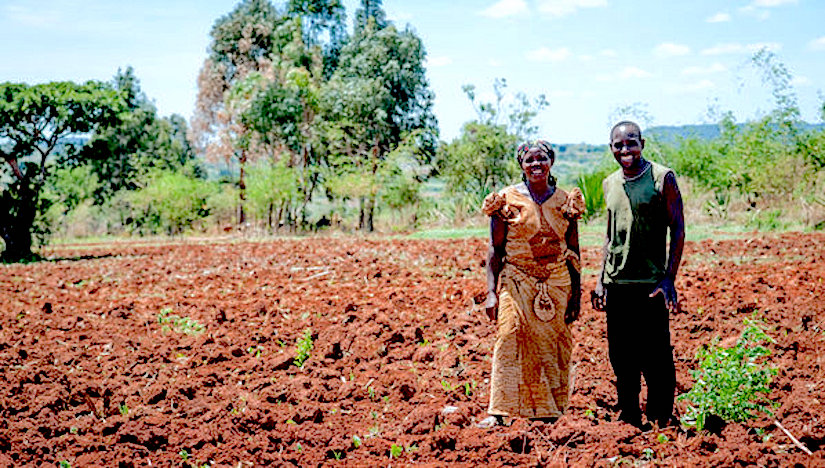 Promoting soil health could help achieveSGDs