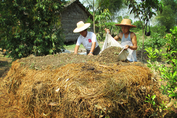 Over the past year farmers have built over 200 compost piles and are already experiencing the benefits. Photo: Myo Kyaw Kyaw - http://www.agriculturesnetwork.org/magazines/global/soils-for-life/composting/addingsoiltocompost.jpg