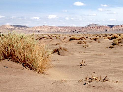 desertification - photo #49