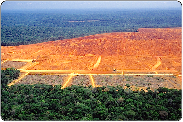 Deforestation of the Amazon – DESERTIFICATION