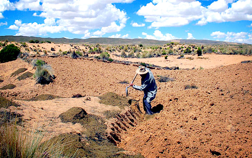 Traditional practices for fragile sandy soils in semi-aridregions