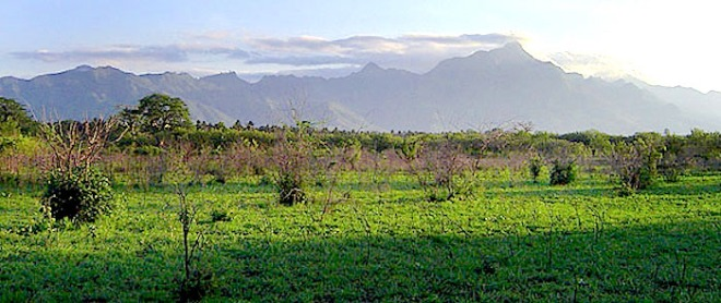 View over Mbuyni Farm in early evening, looking toward the Uluguru Mountains. - http://kimango.com/wordpress2014/wp-content/uploads/Mbuyuni-Farm-3-s.jpg