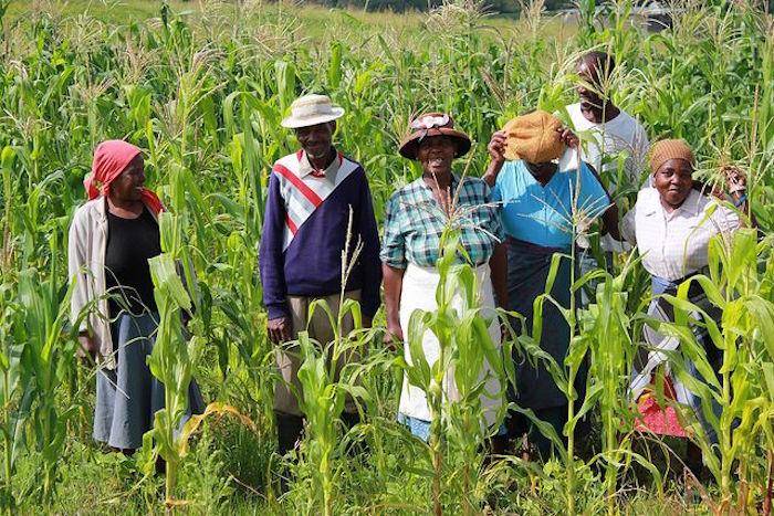 Family farmers' role in world hunger - https://lh6.ggpht.com/-omXSOnwmGiAR1QWnuhPvSXxnnCXY6uwfXHI9JHklB_et7jl8pIatFcA7-6XEuavzyElMzbEXoAfWfdsDp0muapZg5_w=s1024