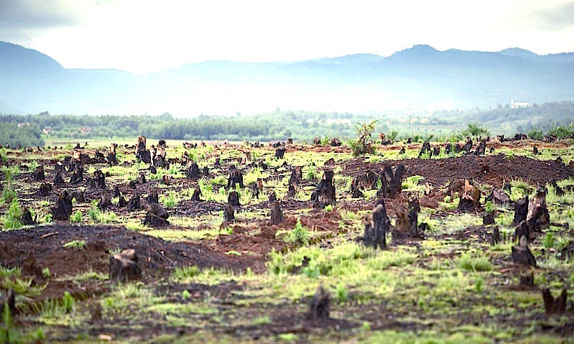 International investors sold or rented 227 million hectares of land in developingcountries
