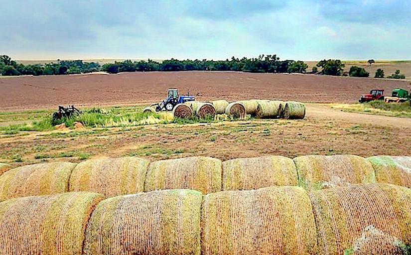 http://www.takepart.com/sites/default/files/styles/landscape_main_image/public/drought-relief-kansas-farm.jpg?itok=JkkD6k67