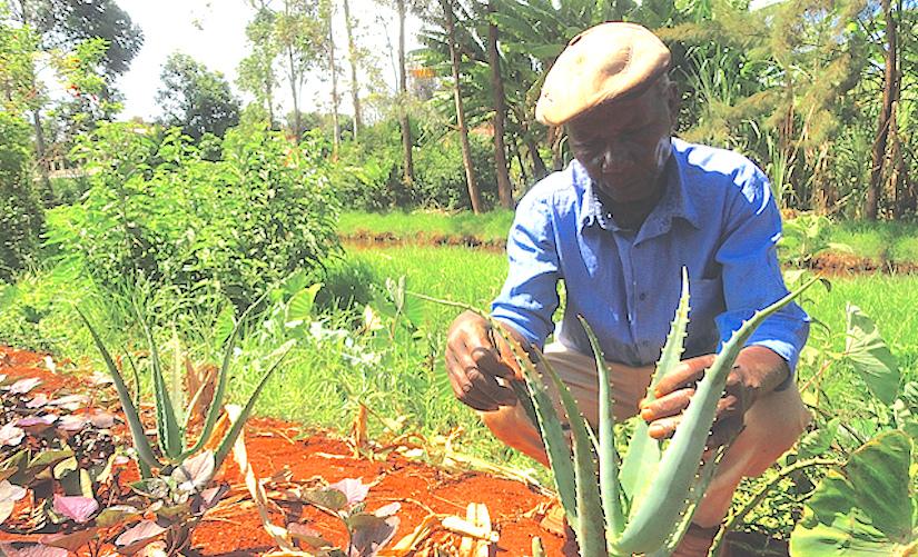 Land grab inKenya