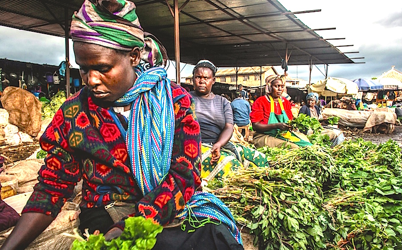 Indigenous vegetables with higher levels of manynutrients