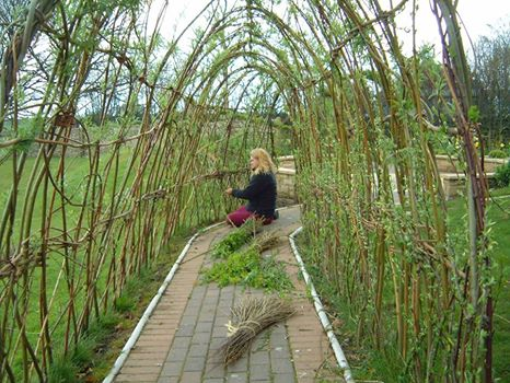 A willow tunnel - * Willow - tunnel - Photo Avantgarden - 29629_830307400316356_4093777_n.jpg