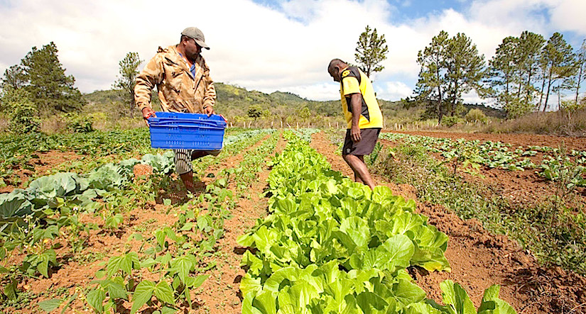 Smallholder farmers are a key part of the solution to the climate changechallenge