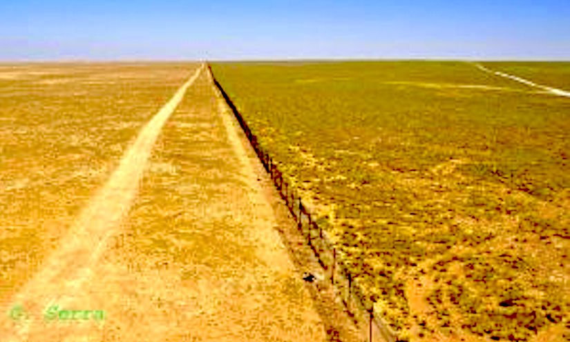 Desertification, overgrazing andconflicts