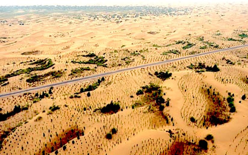 Combating desertification inChina