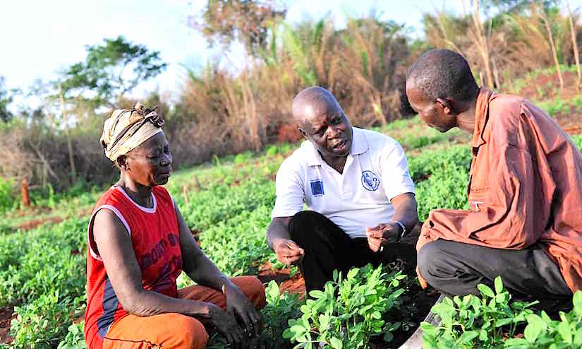 Training programs cultivating a new generation of farmers