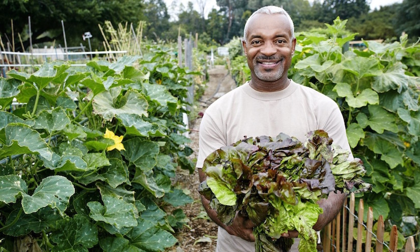 Black man holding lettuce in community garden - http://foodtank.com/assets/images/head/agroecology-LIBERATIN.jpg