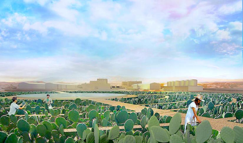 http://f.fastcompany.net/multisite_files/fastcompany/imagecache/slideshow_large/slideshow/2015/10/3051554-slide-s-7-california-farms-could-grow-cactus.jpg