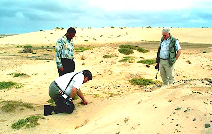 2003-03-Wind erosion-05(MP)