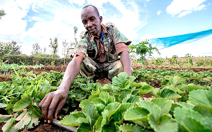 To provide farmers with training and support to implement soil-savingtechniques