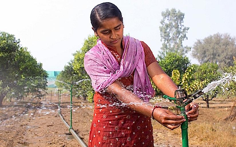 A new success story inIndia