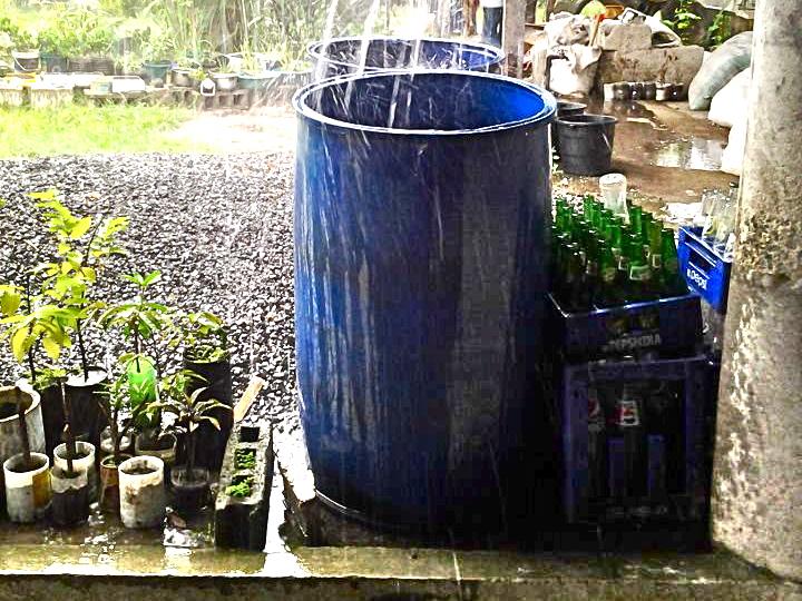 * Drums - rain harvesting - Photo Vc Lim - 543009_339426419459768_100001772389418_778512_1937205101_n.jpg