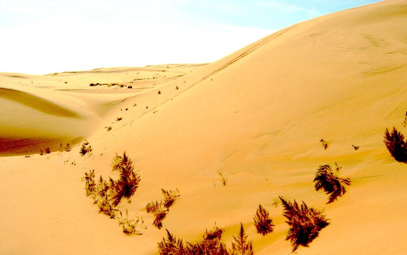 https://upload.wikimedia.org/wikipedia/commons/7/79/Gobi_Desert.jpg
