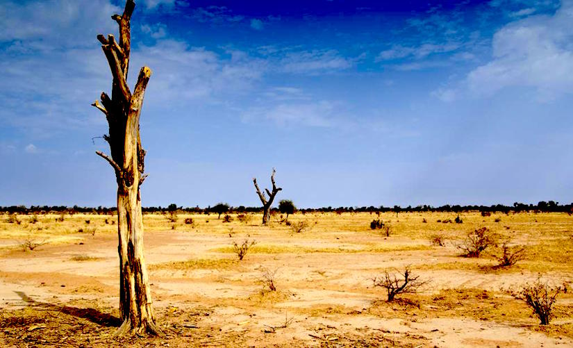 How desertification has turned into a monstrous challenge for Africa