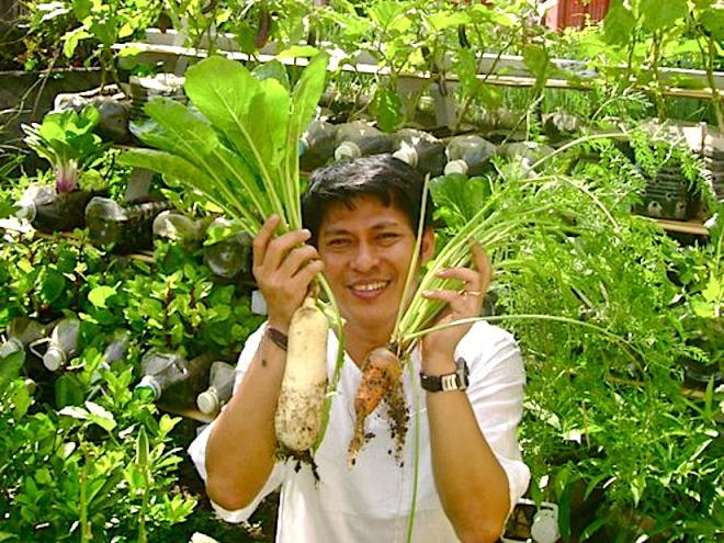 riser-radish-and-carrot-photo-jojo-rom-215853_1728582652671_1181604134_31573102_4686613_n_2