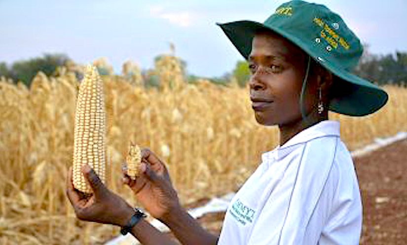 To target 10 million farmers practicing climate-smart agriculture in the next five to sevenyears.