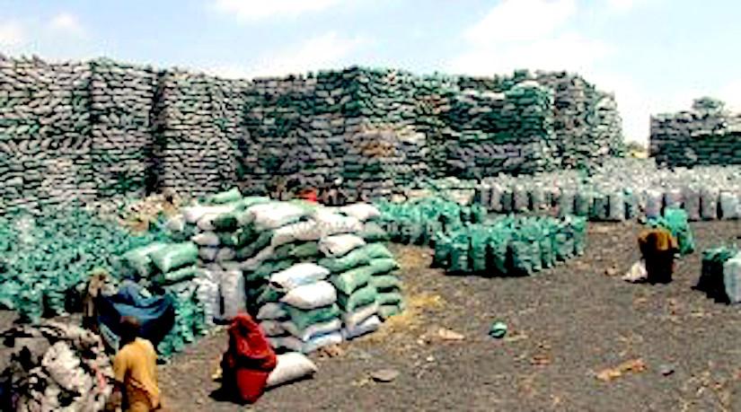 charcoal-somalia