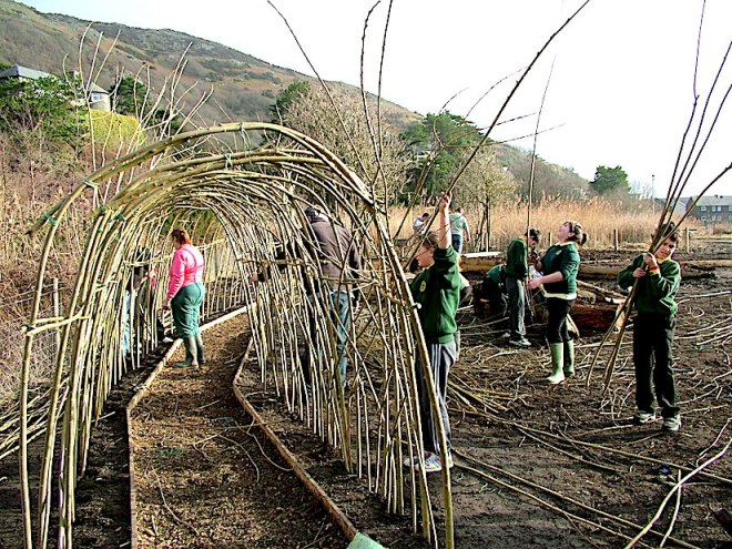 willow_tunnel_barmouth_1-2_17
