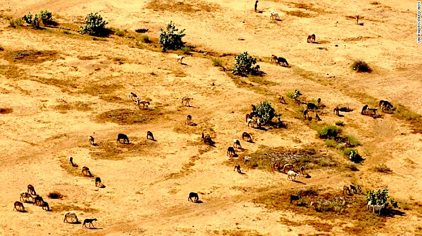 (CNN)Sudan's ecosystems and natural resources aredeteriorating.