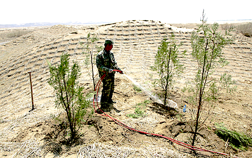 An initiative to curb Desertification along the SilkRoad