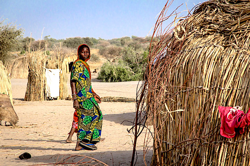 Crisis affecting the Lake Chad basin countries, including Cameroon, Chad, Niger andNigeria.