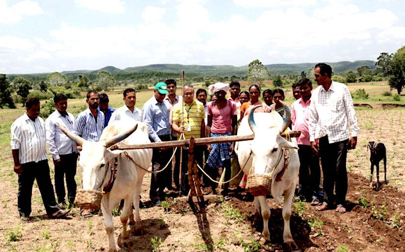 Enabling farmers to enhance theirincomes.