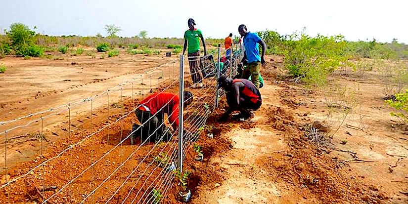 The connection between migration and landdegradation