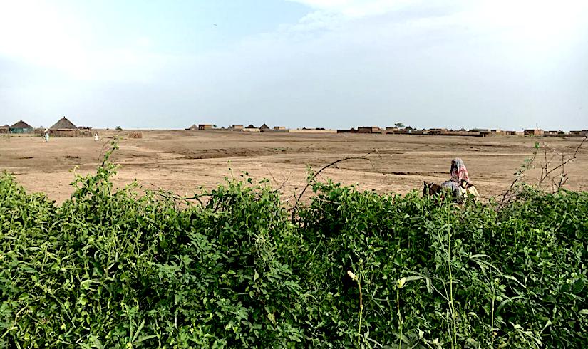 Flash floods and desertification destroying arable land inSudan